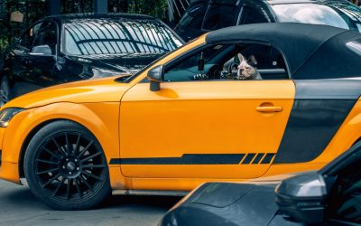 Yellow Car – What you focus on you attract!